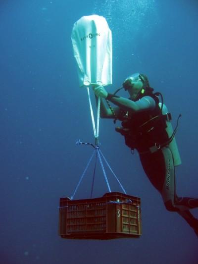 Курс - Поиск и подъем затонувших предметов